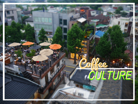 Korea Coffee Culture